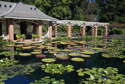 Botanical Gardens In Alabama